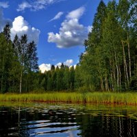 Берег озера Вахрйярви. :: Владимир Ильич Батарин