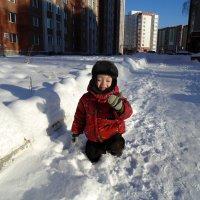 Зимняя прогулка. :: Мила Бовкун