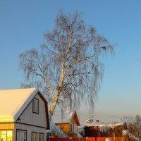 Зимний вечер 6 :: Виталий