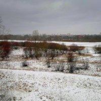 пойма Сожа зимой :: Александр Прокудин