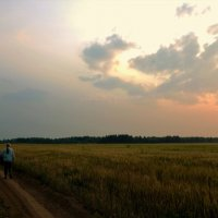Прогулки на закате... :: Sergey Gordoff