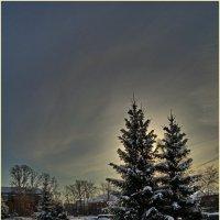 ...зимнего солнца холодный огонь...(с) :: Владимир Михайлович Дадочкин