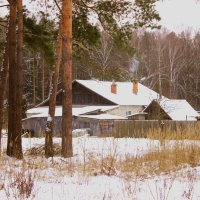 домик в лесу :: оксана