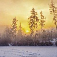 зима...утро..солнце встает... :: юрий иванов