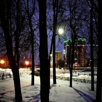Лунный вечер в Вороново :: Александр