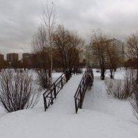 Еще один любимый мостик :: Андрей Лукьянов
