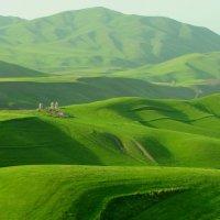 Весна в горах Киргизии :: GalLinna Ерошенко