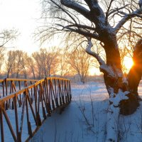 Редкое солце зимой :: Руслан