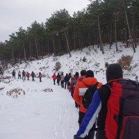 в лесу 18км :: İsmail Arda arda