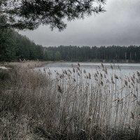 Осень и озеро. :: Андрий Майковский