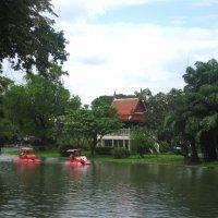 Таиланд. Национальный зоопарк Бангкока. :: Лариса (Phinikia) Двойникова