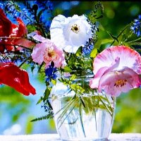 Цветы как бабочки, а бабочки - цветы... :: Александр Корчемный