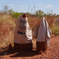 Термитники на обочине дороги к центру Австралии. :: Лара Гамильтон