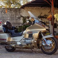 Goldwing 1500 :: Elena Spezia