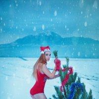 новогодняя суета :: Оксана Циферова