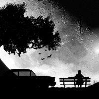 1-я работа Полная луна :: Геннадий Милованкин (MGDart)