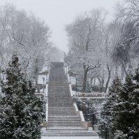 Каменная лестница- Таганрог :: Yuriy Puzhalin