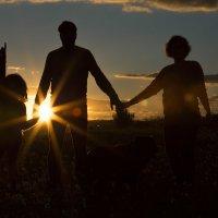 Семья в поле на закате :: Olga Kudryashova