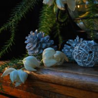 Цветки Юкки и шишки. :: Лара Гамильтон