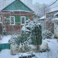Снег идёт :: Дмитрий