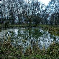 Красоты маленьких озер... :: Александр Бойко