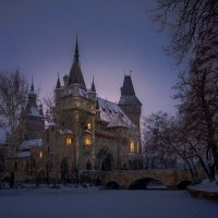 Замок Вайдахуняд в Будапеште :: Тиша