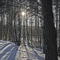 Зима и сонце :: Краснов  Ю Ф