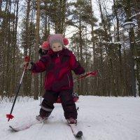 Лыжные гонки! :: Юля Колосова
