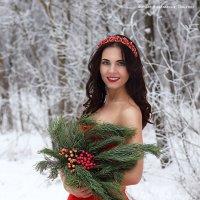 Зимний огонь :: Анастасия Тищенко