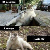 С наступающим 2017 годом, дорогие друзья! :: Игорь Бойко