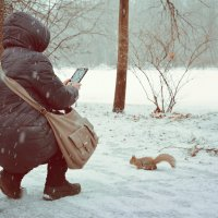 фотоохота :: Наталия П
