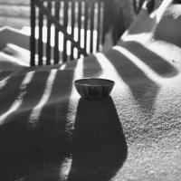 Долгое чаепитие на снегу :: Сергей Шаврин