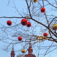 На Красной площади :: Алла Захарова