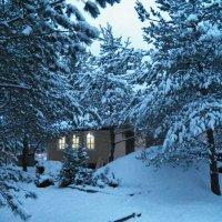 Синий зимний вечерок :: Регина Пупач