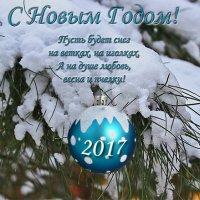 С Новым Годом, друзья! :: Светлана