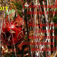 С наступающим 2017 годом! :: Юрий Шувалов