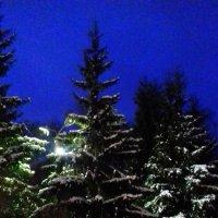 Ночь в парке . :: Мила Бовкун