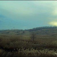 ДОРОЖНЫЙ ПЕЙЗАЖ :: Валерий Викторович РОГАНОВ-АРЫССКИЙ