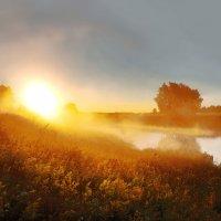 Путешествие в лето :: sergej-smv