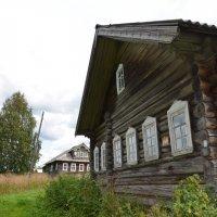 Северные деревянные дома :: Sasha Chernova