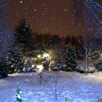 падал прошлогодний снег (1) :: Алексей Совалев