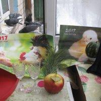 Петух и голубки жаждут любви... :: Алекс Аро Аро