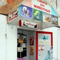 Очередь в магазин :: Сергей К