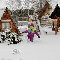 Новогодняя прогулка по огороду...)) :: Владимир Хиль