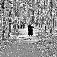 Осеннее настроение :: Константин Жирнов