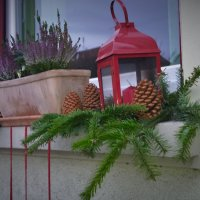 Рождественское окно :: kuta75 оля оля