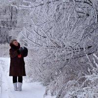 Я снимаю зиму..... :: владимир