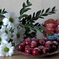 Замороженные витамины :: Татьяна Смоляниченко