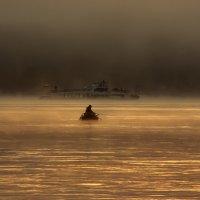 В тумане. :: Svetlana