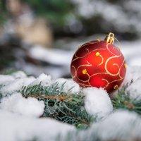 Новогодняя игрушка. :: Елена Кознова